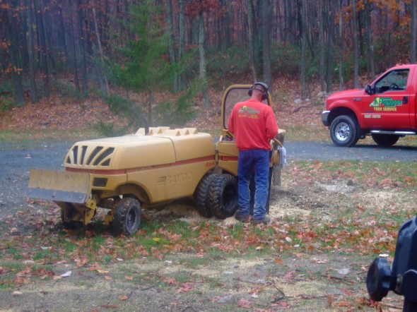 Flanagan's Stump Grinding Man