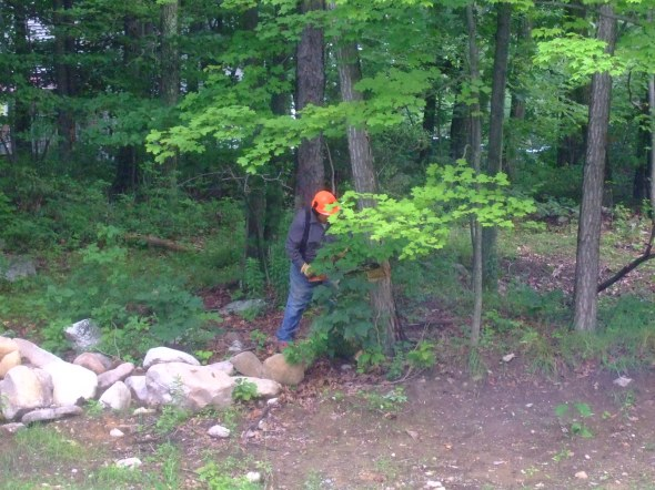 Orange helmet spotted in the woods.