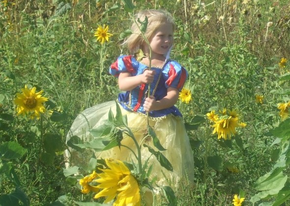 Snow White in the sunflower field.