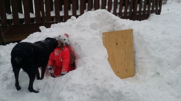 Two bedroom igloo. Complete with door.
